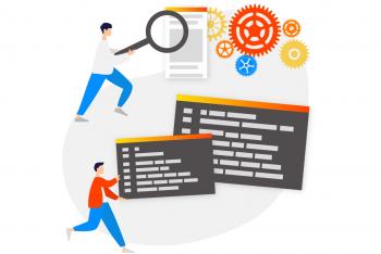 Intermediate/Senior Developer